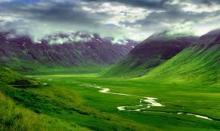 Viral Islanda